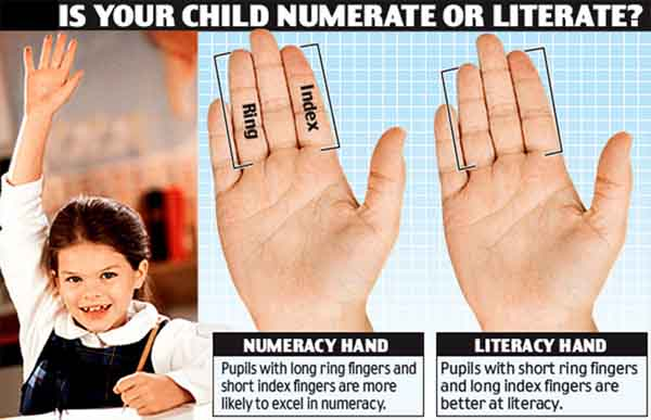 length-of-fingers-7-year-old-maths-english