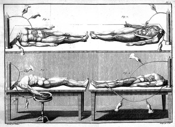 L0023894 Giovanni Aldini, Essai...sur le galvanisme...
